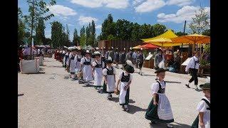 Festzug Donaugaufest 2017 Pfaffenhofen