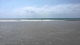 видео Волга впадает в Черное море