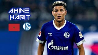 Amine Harit 2018-2019 - Wizard - Magic Skills Show - Schalke 04 / أمين حارث