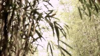 HEO YOUNG SAENG (허영생)_RAINY HEART_M/V(뮤직비디오)