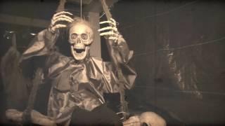 Halloween Haunted House Gisborne