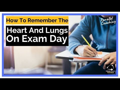 Anatomy Quiz - How to remember the Heart and Lungs on Exam Day