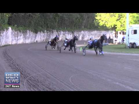 Harness Pony Racing On New Years Day, January 1 2015