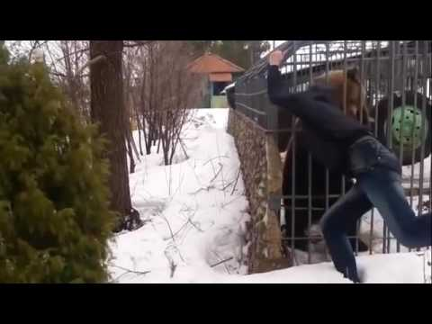 NormalDayinRussia #3 Russian Drunk Bear Rage