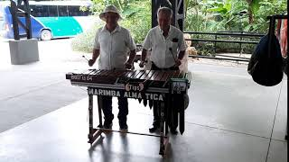 Costa Rican marimba Is Now a National Symbol