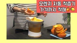 독일 레몬&오렌지 착즙기 자동회전인데 놀라운 가…