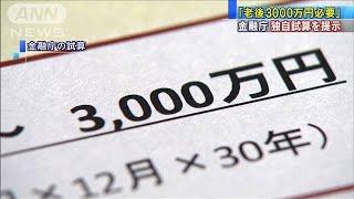 「最大3000万円必要」金融庁が試算 必要額さらに?(19/06/18)