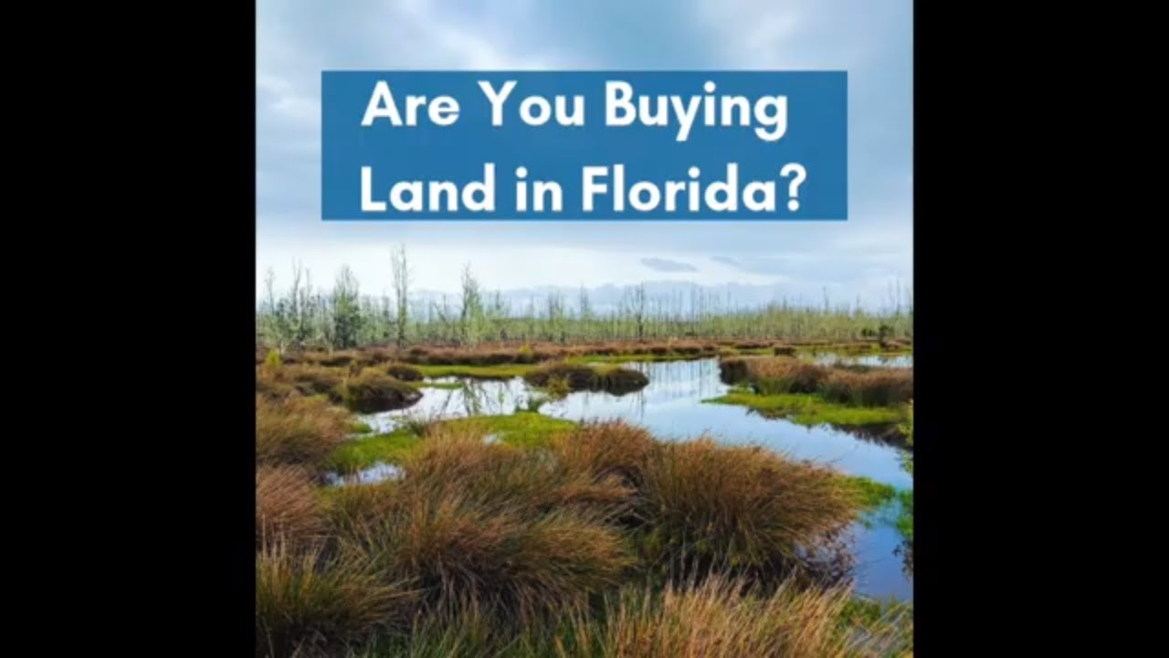 What You Need to Know About Buying Land in Florida