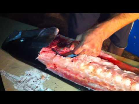 How To Cut Hamachi Kama (Yellowtail Collars)