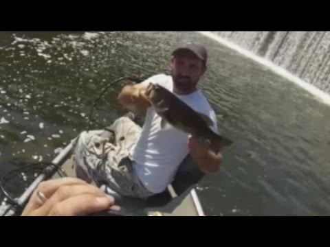 Bass Fishing-Upper Potomac Scout About