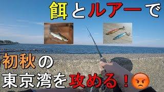 【三春町岸壁】東京湾に秋のハイシーズン到来!横須賀の海辺つり公園の隣にある岸壁を泳がせ釣りとメタルジグで攻める!【2019.09.30】
