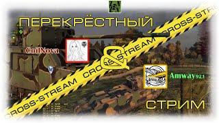 Cross-Stream №3: Amway921 и Annet CoilNova