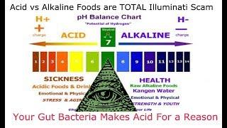 Acid vs Alkaline Foods are a TOTAL Illuminati SCAM Video