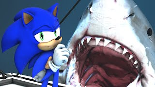 Repeat youtube video Sonic in JAWS