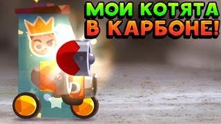 МОИ КОТЯТА В КАРБОНЕ! - CATS: Crash Arena Turbo Stars