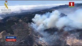 На Канарах из-за пожаров эвакуированы 2000 человек