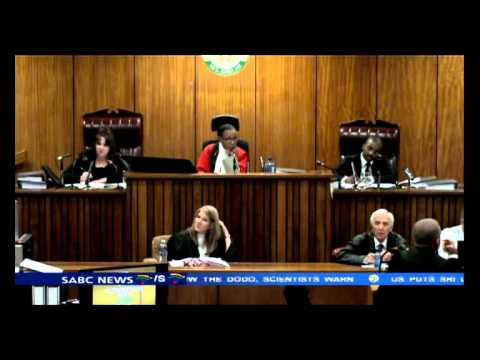 The second witness gave her version of the story: Oscar Pistorius Trial