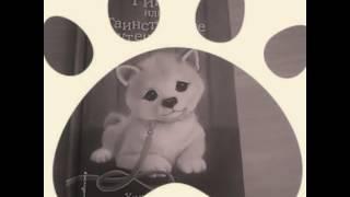 Обзор на книгу щенок Рина или таинственное путешествие