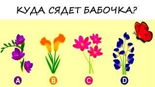 Психологический тест! Невероятно точный тест на отношения: на какой цветок сядет бабочка?