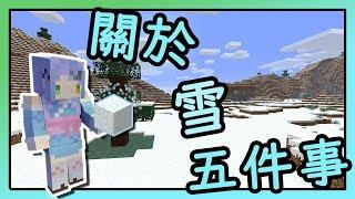 Minecraft 關於雪你一定要知道的5件事|????雪方塊和雪哪裡不同了?