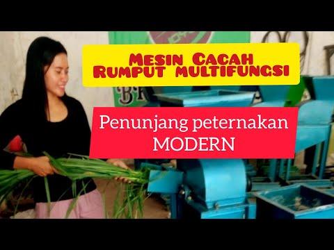 Mesin Cacah rumput multifungsi uji coba batang jagung