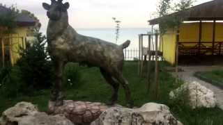 видео Базы отдыха недалеко от Увильды: цены на турбазы рядом с Увильды
