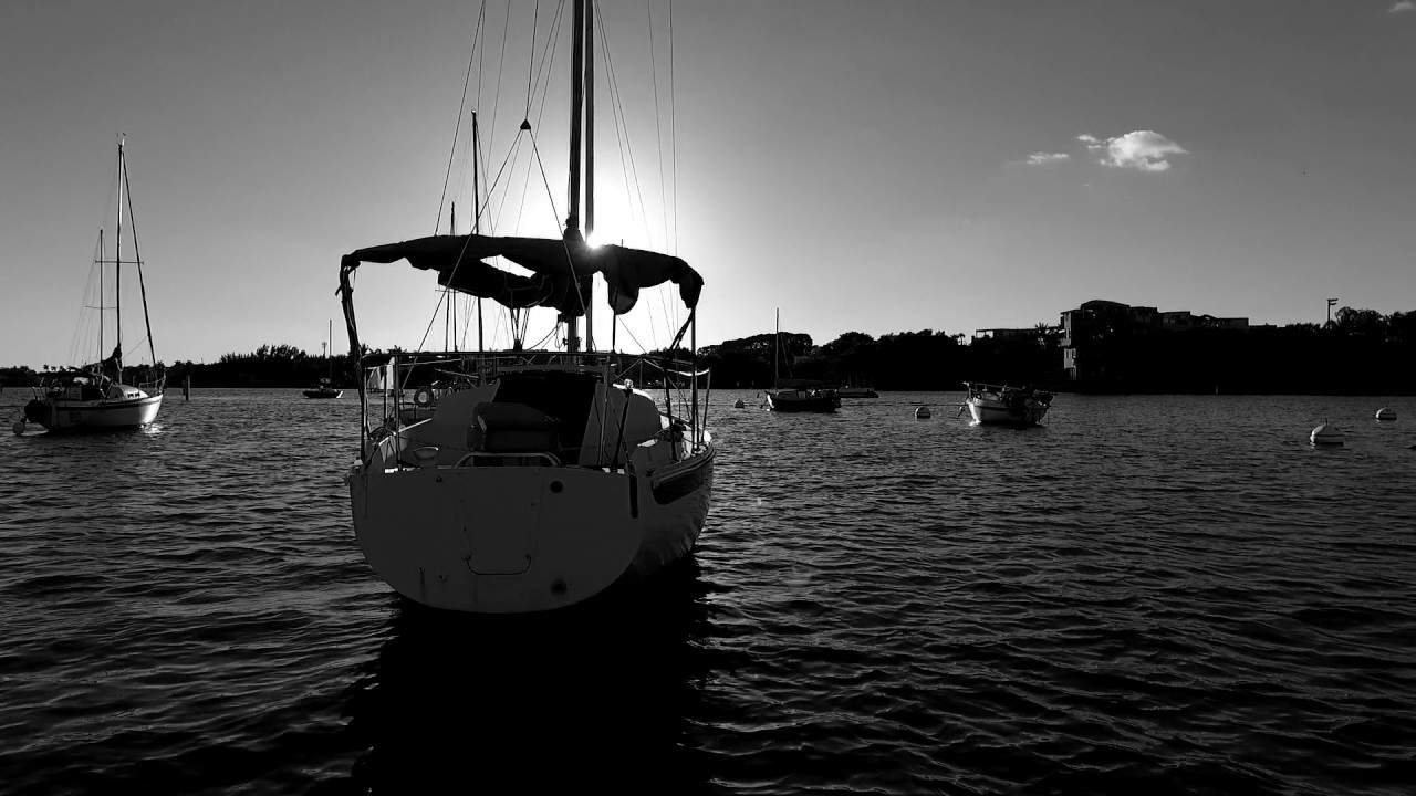 coconut grove in black and white with a drone up top youtube