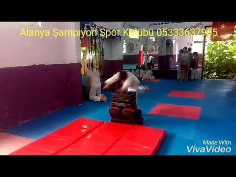 Alanya Şampiyon Spor Kulübü Taekwondo 05333637965
