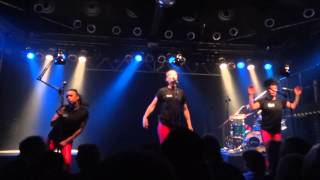 Laing - Pleite (Live in Hannover 2013) HD
