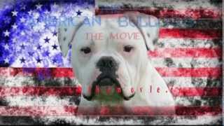 The American Bulldog, The Movie. Trailer