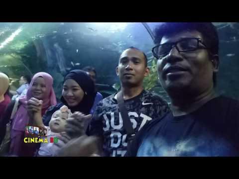 দেখুন-মালশিয়া-কত-বড়-মাছ-cinema-bd