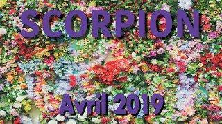 SCORPION - AVRIL 2019 ~ Un bouleversement heureux !