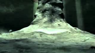 ВВС. Дикий Мир Будущего (через 200 000 000 лет.flv