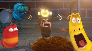 LARVA - SHOWDOWN | Cartoon Movie | Cartoons For Children | Larva Cartoon | LARVA Official