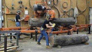 Wood-mizer & Family Team Mill Walnut Logs