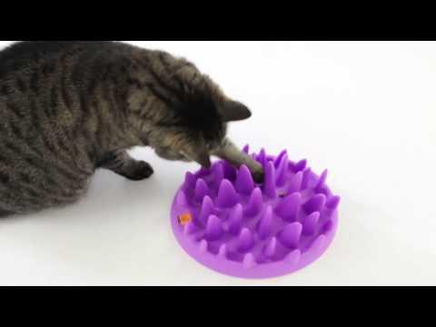 Northmate Catch Anti-Schock Napf für Katzen | Pharmacy4pets.de