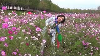문화예술기획사 박미현가수