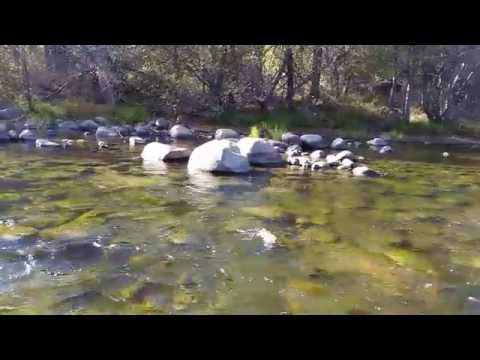 Kern River Fly Fishing Technique