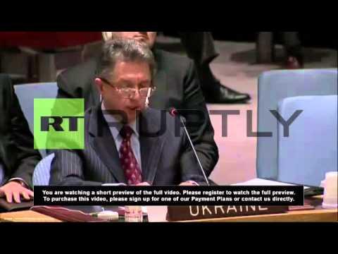 United Nations: Russia's Crimea veto is no surprise - Ukraine UN ambassador