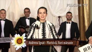 Andreea Ignat - Floricica, flori marunte