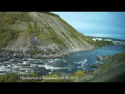 Видео с поезда Москва Мурманск  8 сентября 2018