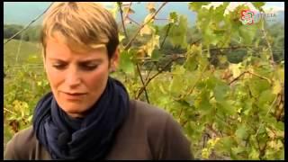"""Storie di agricoltura. Chiara: """"Cambio vita e vado a vivere in campagna"""""""