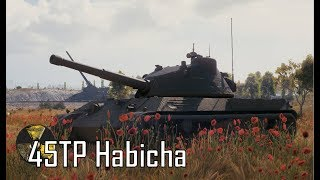 45TP Habicha - Zacnie bo Polsko 11(G)