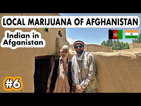 HOW IS THE LOCAL WEED OF AFGHANISTAN?