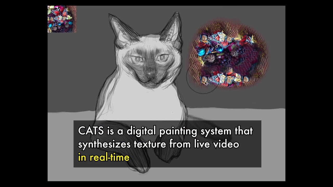 Painting with CATS