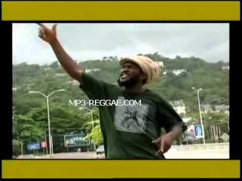Chezidek   Leave The Trees Reggae Video  new songs dancehall ska roots