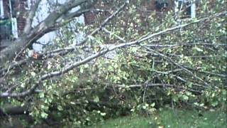 Hurricane Sandy Storm Assessment Lodi/Hasbrouck Heights, NJ