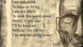 Скачать My Chemical Romance Famous Last Words Lyrics