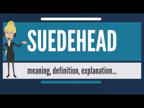 What is SUEDEHEAD? What does SUEDEHEAD mean? SUEDEHEAD meaning, definition & explanation