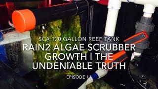SCA 120 Gallon Reef | Ep.11 | Rain2 Algae Scrubber Growth - The Undeniable Truth